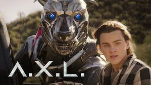 Action & Adventure Movies | Netflix Official Site