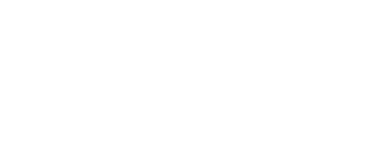 The Guest Netflix